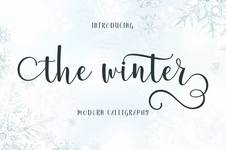 The Winter | WEB FONT example image 1