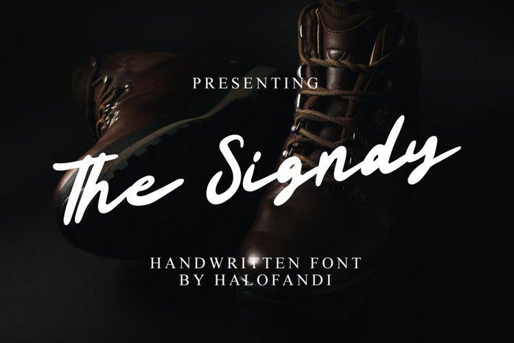 The Signdy example image 1