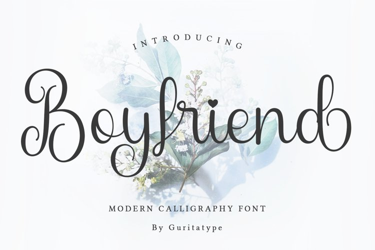 Boyfriend example image 1