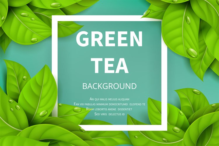 Green tea leaves vector nature background example image 1