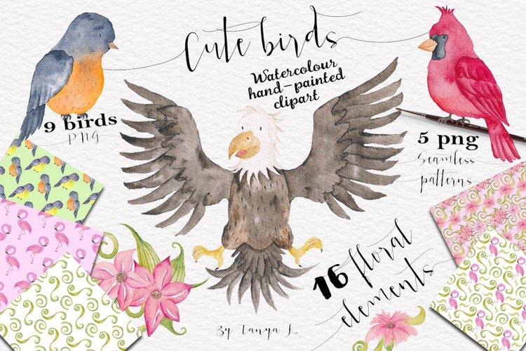 Cute Birds Watercolor Set example image 1