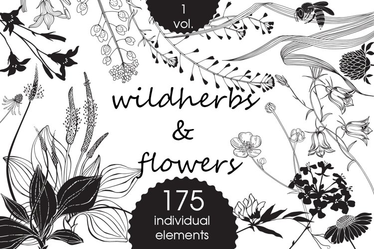 Wildherbs and flowers. example image 1
