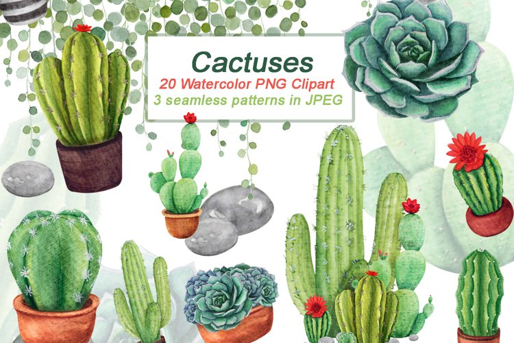 Watercolor Cactus Clipart Set, Succulent Clip Art, PNG