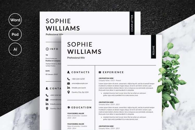 Clean Resume Template example image 1