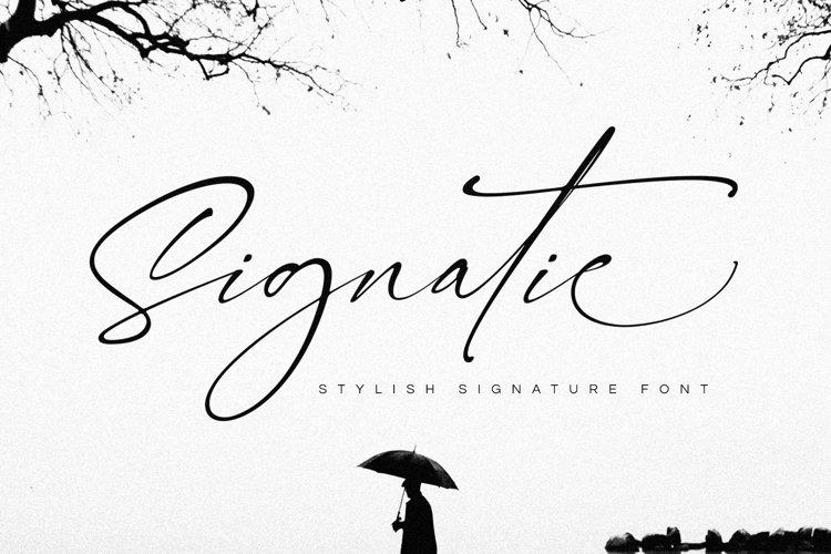 Signatie | Stylish Signature Font example image 1