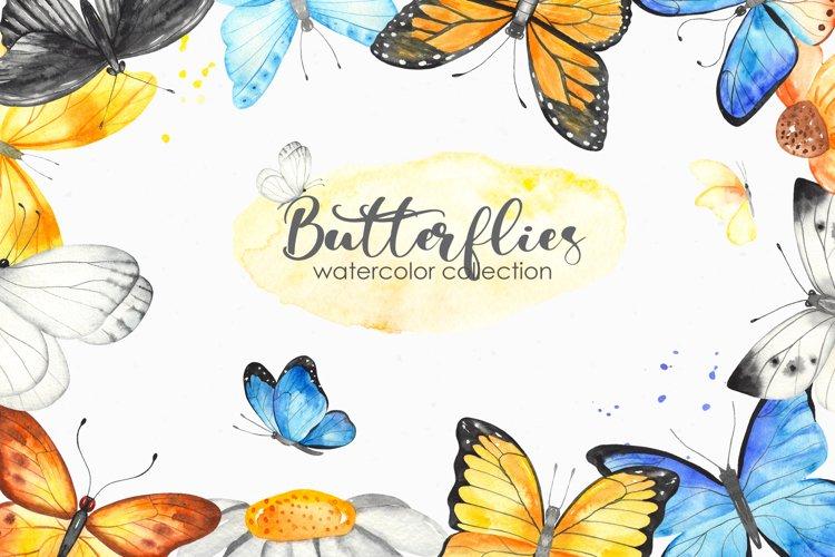 Watercolor butterflies. Clipart, cards, frames, wreaths