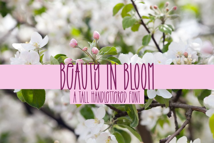 Beauty In Bloom - A Tall Handlettered Font example image 1