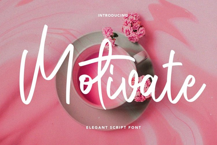 Web Font Motivate - Elegant Script Font example image 1