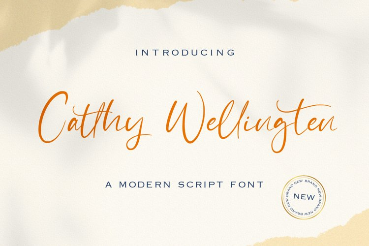 Catthy Wellingten - Modern Script Font example image 1