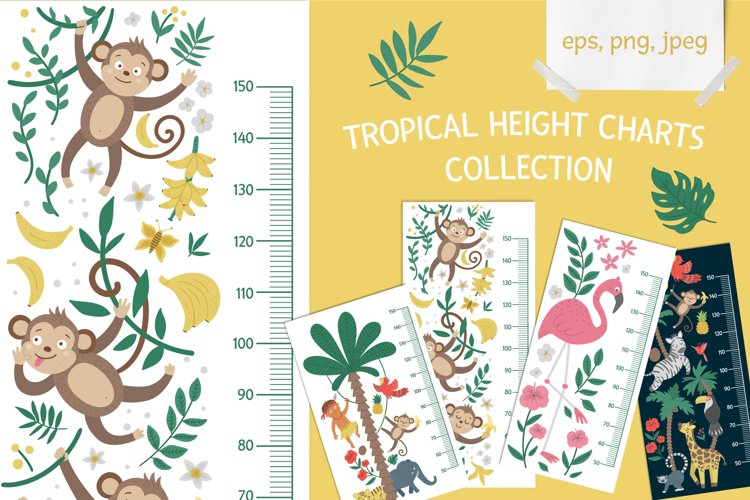 Download Tropical Height Charts Collection 538777 Decorations Design Bundles