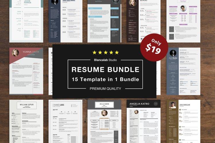 Job Seeker's Resume Bundle example image 1