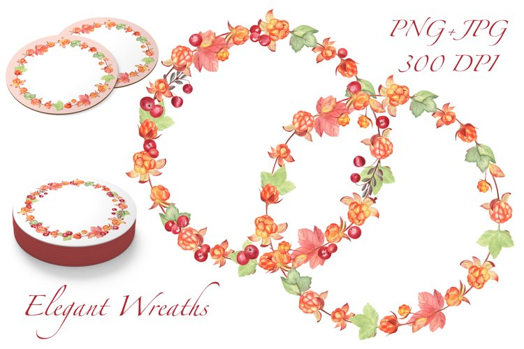 Cloudberry and Cranberry, Farmhouse watercolor patterns, PNG example 3