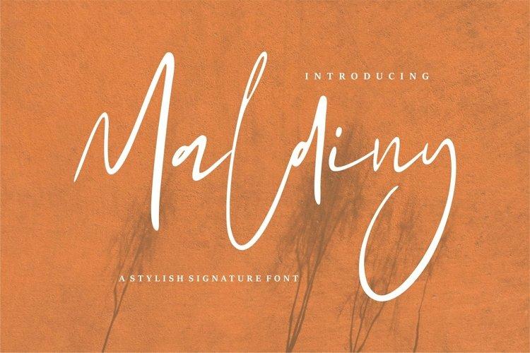Web Font Maldiny - A Stylish Signature Font example image 1