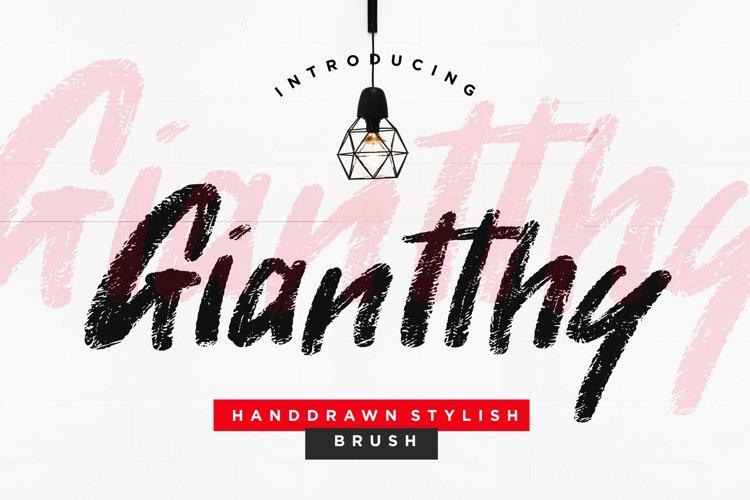 Giantthy Handdrawn Stylish Brush example image 1