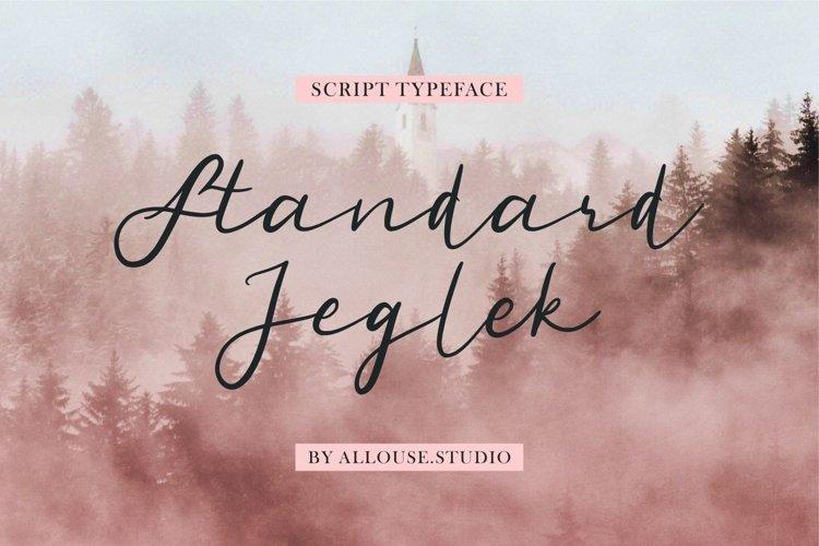 Web Font - Standard Jeglek - Script Typeface example image 1