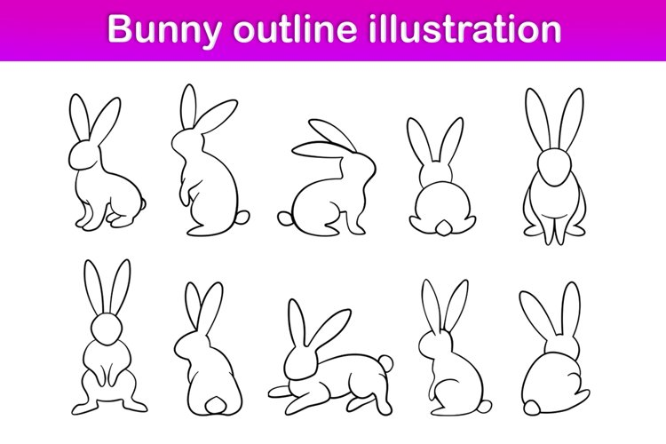 Bunny illustration set