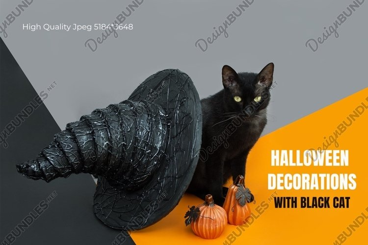 Halloween card with black cat, witch hat and ceramic pumpkin example image 1