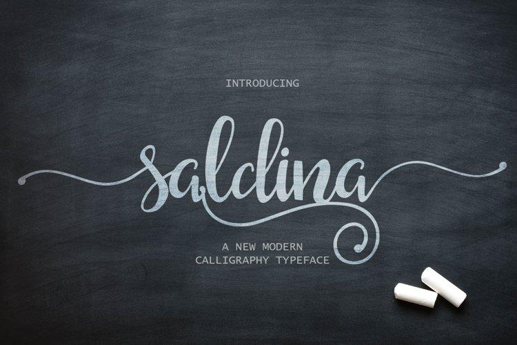 Saldina Script example image 1