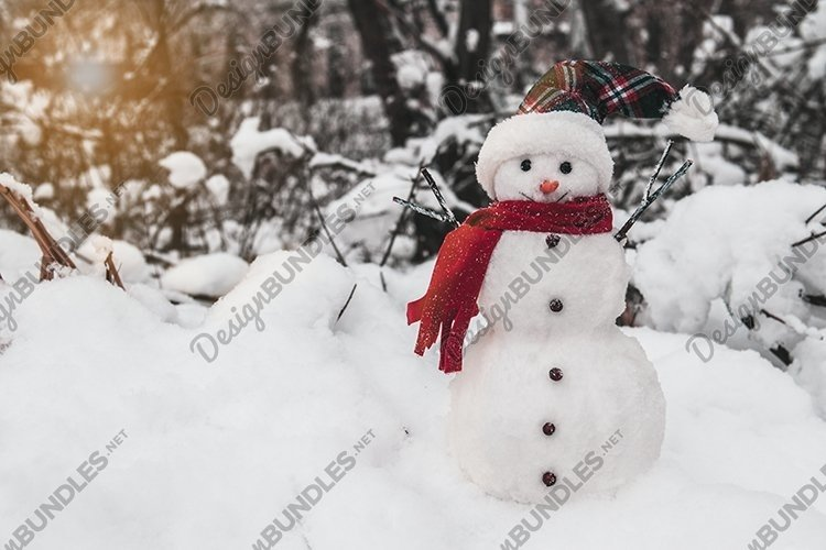 Snowman with cap and scarf