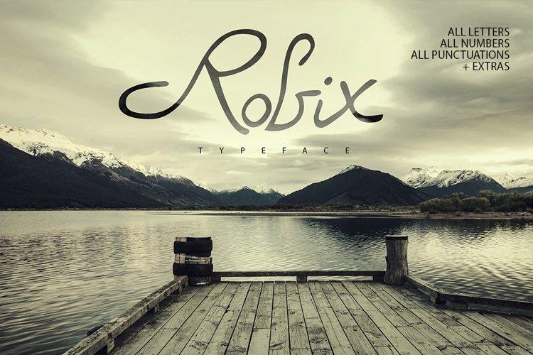 Robix Typeface  Extras example image 1