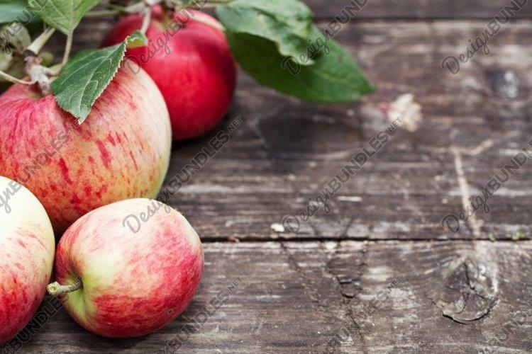 ripe apples autumn organic eco background #4