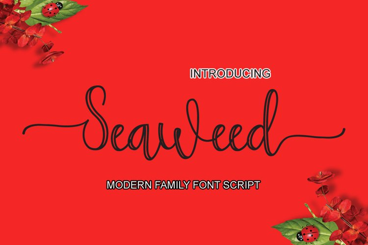 Seaweed example image 1