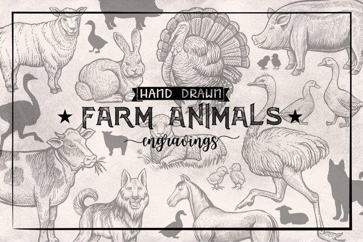 Farm Animals Collection example image 1
