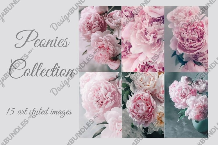 Pink Peonies Collection