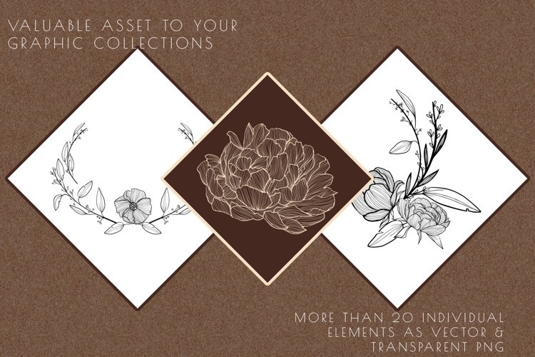 floral clipart, flower hand drawn illustrations, peony logo example image 1