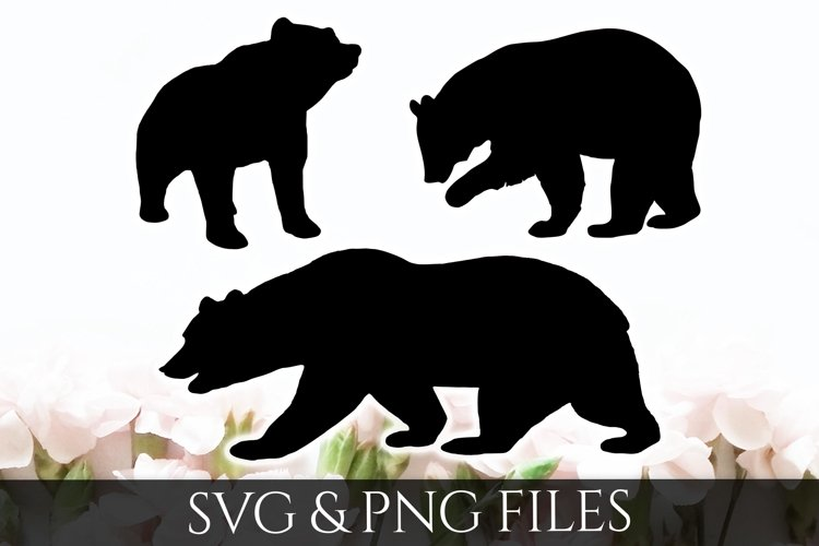 Bear SVG & PNG File example image 1