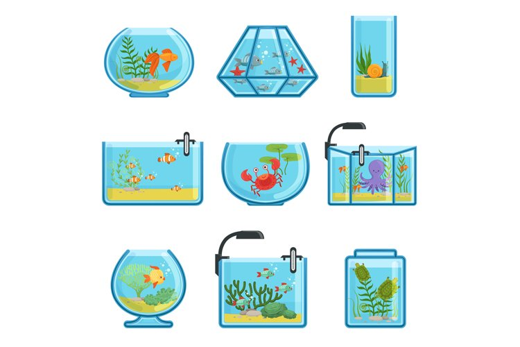 Illustrations set of different aquariums with fishes and sal example image 1