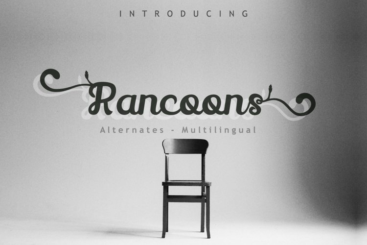 Rancoons Font example image 1