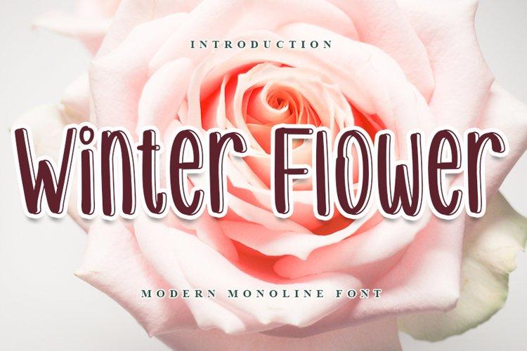 Winter Flower - Modern Monoline Font example image 1