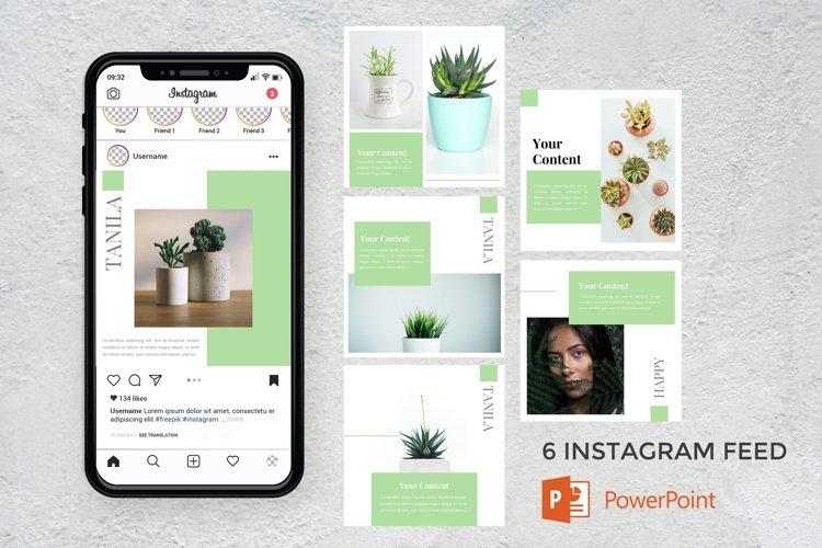 Instagram Feed - Tanila example image 1