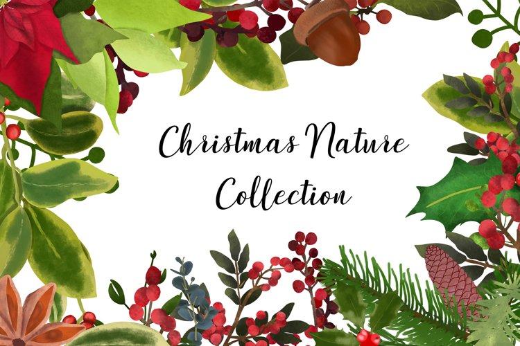 Christmas Nature bundle example image 1