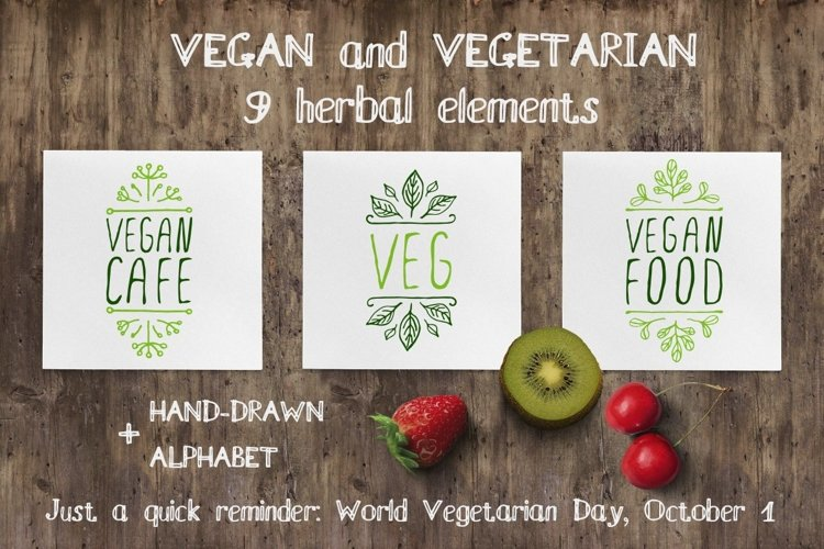 Hand drawn herbal elements   SVG EPS AI PNG PSD JPEG example image 1