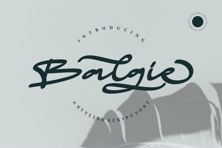 Web Font Balgie - A Stylish Script Font example image 1