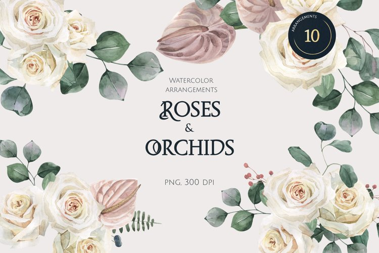 Roses and Orchids watercolor arrangements set example image 1
