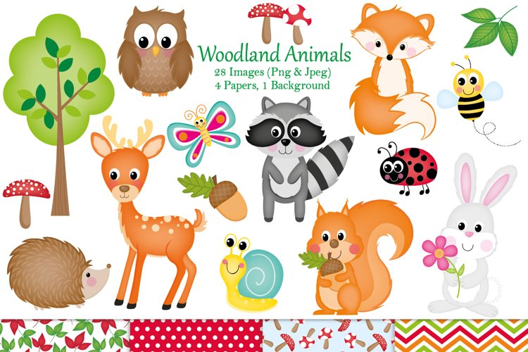 Cute animal clipart, Woodland animal graphics   Illustration