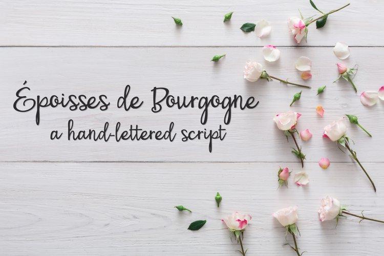 PN Époisses de Bourgogne example image 1