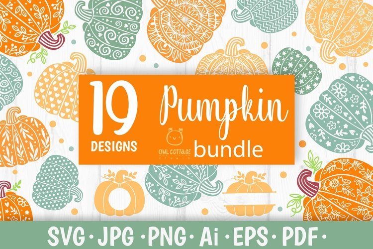 Floral Pumpkin svg Bundle, Thanksgiving svg Bundle, Fall svg example image 1