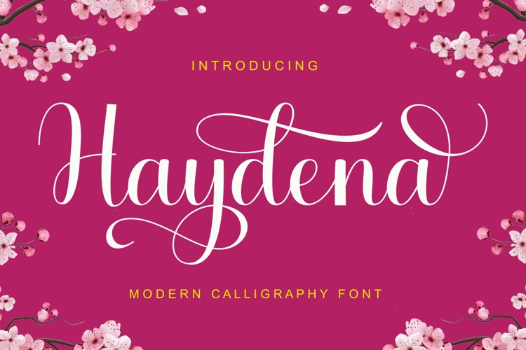Haydena example image 1