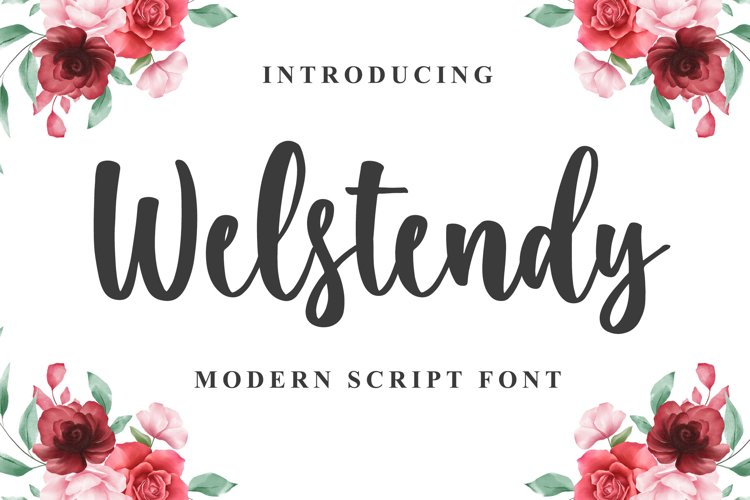 Welstendy - Modern Calligraphy Font example image 1