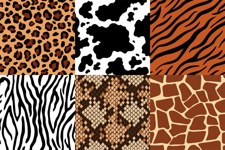 Animal skins pattern. Leopard leather, fabric zebra and tige example image 1