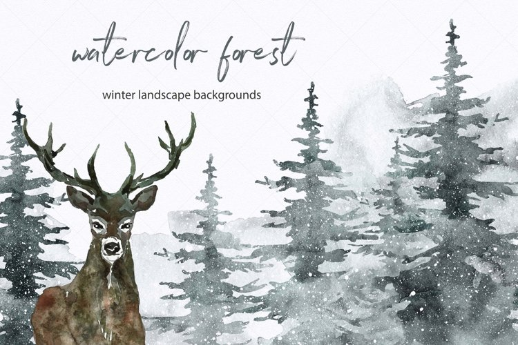Winter Spruce Watercolor Pine tree Forest Landscape Clipart