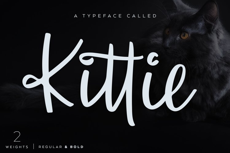 Kittie | Regular & Bold example image 1