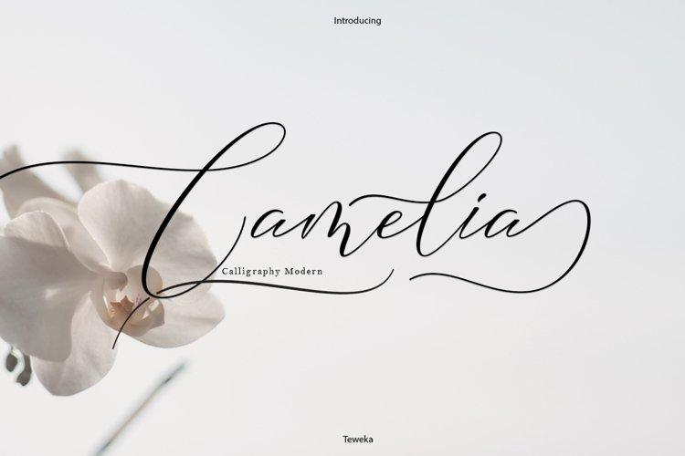Camelia Calligraphy Modern example image 1