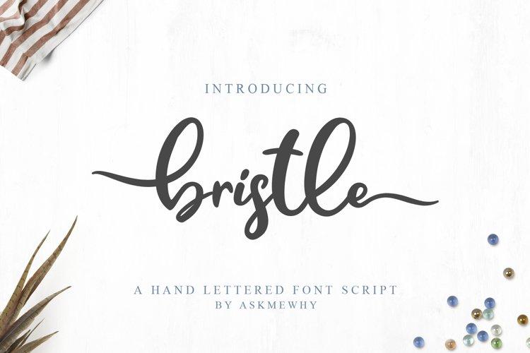 Bristle - Beautiful Font Script example image 1