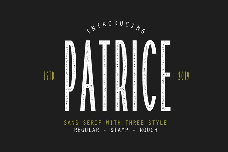 Patrice - Sans Serif Font example image 1
