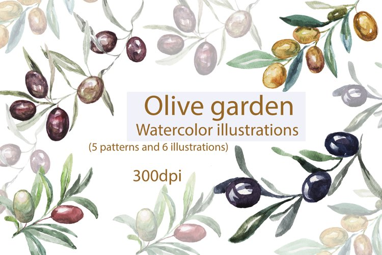Watercolor hand drawn illustration, patterns with olives